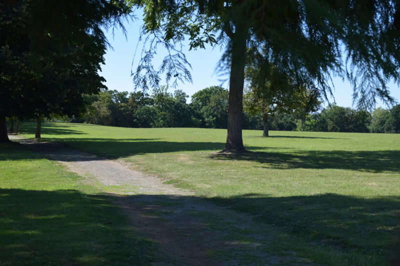 Combourg-20150821-6825
