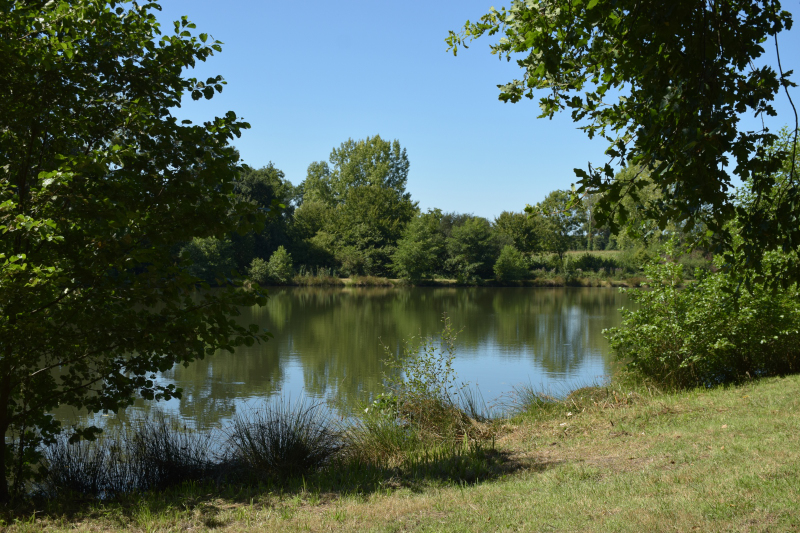Combourg-20150821-6865