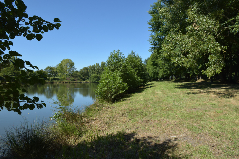 Combourg-20150821-6867
