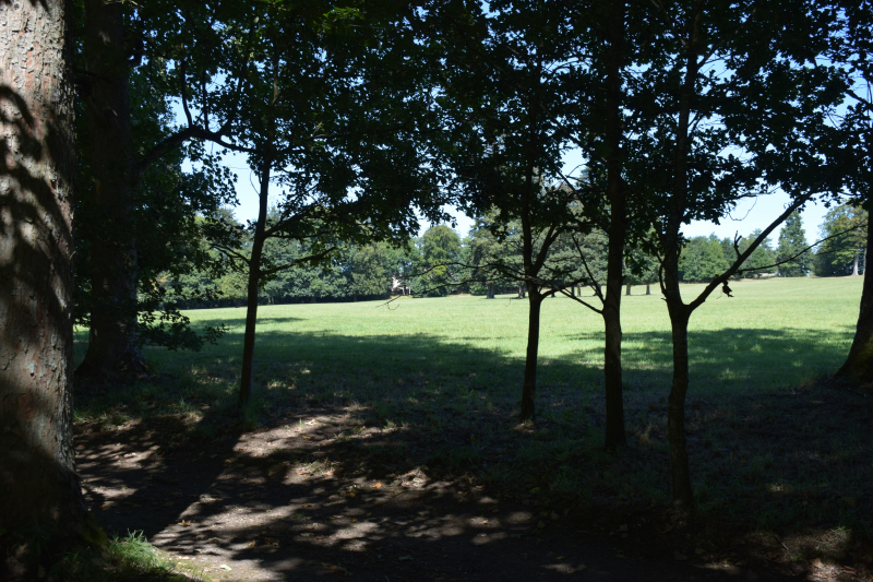 Combourg-20150821-6894