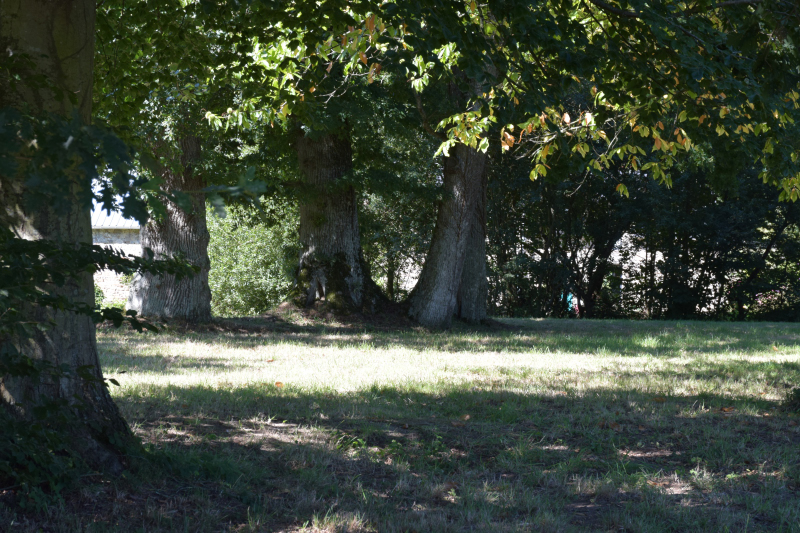Combourg-20150821-6908
