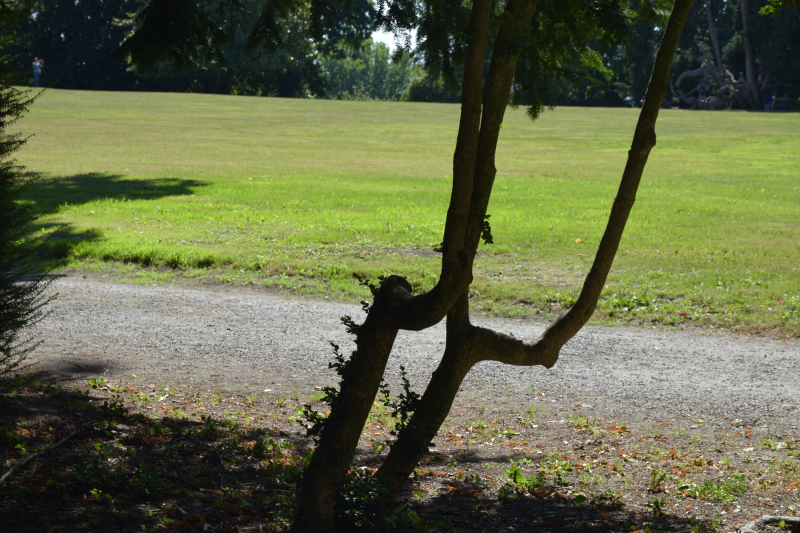 Combourg-20150821-6927